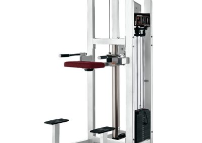 Hammer Strength Pin Select Assist Dip/Chin