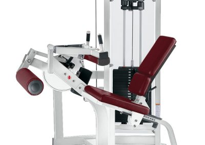 Hammer Strength Pin Select Leg Curl