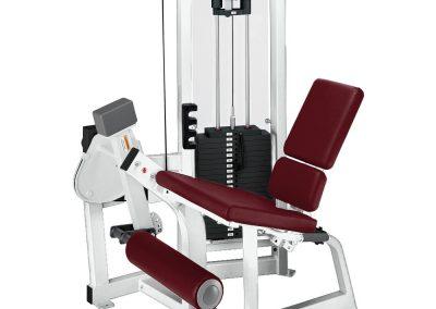 Hammer Strength Pin Select Leg Extension